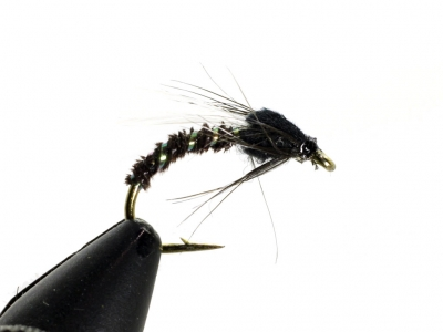 Adult Emerger