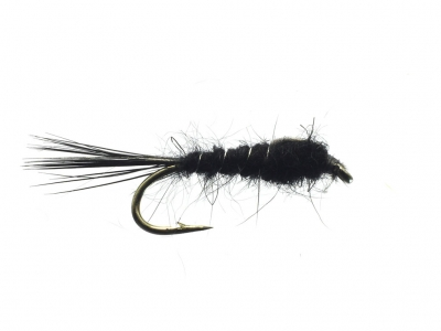 Black Nymph