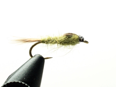 Hare's Ear Olive