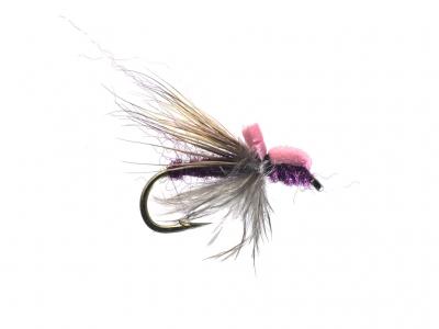 Balloon Caddis purple & pink