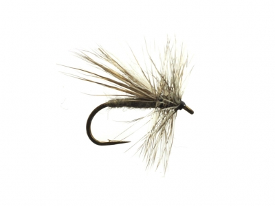 Grey Caddis