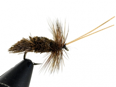 Goddard Caddis - Dark Brown
