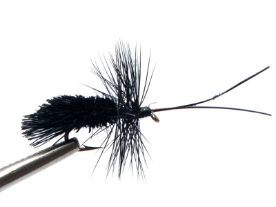 Goddard Caddis - Black