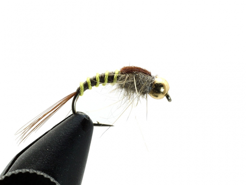 GBH Czech tiger Mayfly